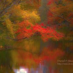 Autumnal Retreat