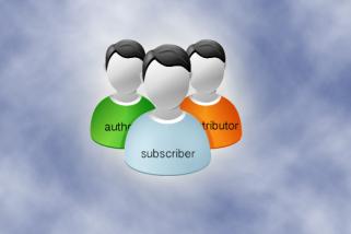 WordPress Subscriber Abilities