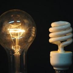 Daylight Fluorescent Bulbs for Digital Photography